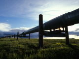 Alaska Pipeline on the North Slope Fotografie-Druck von Michael S. Quinton
