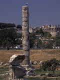 Column Temple of Artemis in Ephesus, Turkey Fotografie-Druck von Richard Nowitz