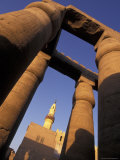 Columns at Luxor Temple in Luxor, Egypt Fotografie-Druck von Richard Nowitz