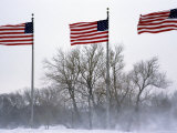 American Flags Blow in a Winter Storm, Washington, D.C. Photographic Print by Stacy Gold
