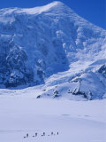 Climbing Expedition Passes Below Mount Forraker in the Alaska Range Photographic Print by Bill Hatcher