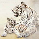 Tigres Blancs, Mere et Fille Prints by Danielle Beck