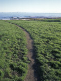 Coastal Access Trail Through Native American Land in Santa Barbara, California Photographic Print by Rich Reid