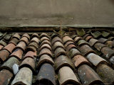 Close View of Terracotta Roof Tiles on a Rooftop in Venice, Italy Photographic Print by Todd Gipstein