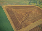 Aerial of Crops Photographic Print by Kenneth Garrett