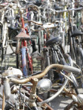 Close View of Bicycles, Italy Photographic Print by Gina Martin