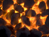 Coals on a Campfire Grill at the 4-H Photo Camp at Halsey, Ne Photographic Print by Joel Sartore