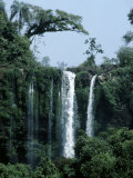 Beautiful Waterfall Surrounded by Pristine Subtropical Rainforest Photographic Print by Jason Edwards