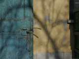 Blue Rustic Door against a Yellow Shadowed Wall, Bologna, Italy Photographic Print by Gina Martin