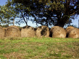 Bales of Hay on a Farm Photographic Print by Stacy Gold