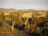 Aerial View of Idyllic Farmland at Dawn Surrounded by Forest, Australia Photographic Print by Jason Edwards