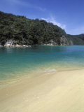 Beach in Torrent Bay, Abel Tasman National Park Photographic Print by Rich Reid