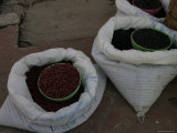 Beans for Sale at an Open Air Market, Mexico Photographic Print by Gina Martin
