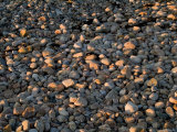 Close-Up of Rocks on a Beach Illuminated by the Setting Sun, Block Island, Rhode Island Photographic Print by Todd Gipstein