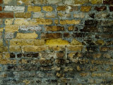 Close View of Aged Bricks on a Wall in Venice, Italy Photographic Print by Todd Gipstein