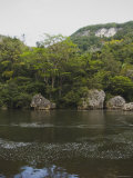 Boulders and Ridge Line over the Belize River Photographic Print by James Forte
