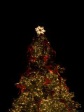 Christmas Tree at Night Photographic Print by John Burcham