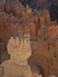 Bryce Canyon National Park, Utah Photographic Print by John Burcham