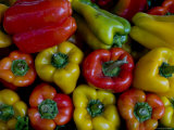Green, Red and Yellow Peppers at the Rialto Market in Venice, Italy Photographic Print by Todd Gipstein