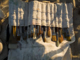 Brushes in a Canvas Paint Brush Holder Illuminated by Sunlight, Block Island, Rhode Island Photographic Print by Todd Gipstein