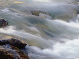 Flowing Stream at the Lewis and Clark National Forest Photographic Print by Joel Sartore