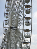 Ferris Wheel in Paris, Paris, France Photographic Print by  Brimberg & Coulson