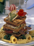 Gourmet Sandwich Served on a Balcony of a Restaurant in Amalfi, Italy Photographic Print by Richard Nowitz