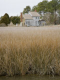 Abandoned House Among Coastal Grasses on Chesapeake Bay, Maryland Photographic Print by David Evans