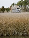 Abandoned House Among Coastal Grasses on Chesapeake Bay, Maryland Photographic Print by David Evans