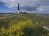 Estonia, Saaremaa: Landscape of Lighthouse Photographic Print by  Brimberg & Coulson