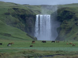 Iceland: Skogafoss, South Iceland Photographic Print by  Brimberg & Coulson