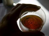 Half Empty Beer Glass, Arhus, Denmark Photographic Print by  Brimberg & Coulson