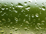 Drops of Water on Glass with a Green Background, Groton, Connecticut Photographic Print by Todd Gipstein