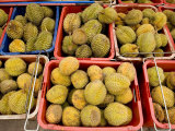 Durian Fruits at an Outdoor Market in Malaysia Photographic Print by Tim Laman