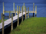 Dock in the Bay Photographic Print by Stacy Gold