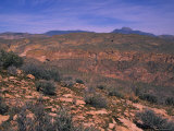 Desert Landscape of Arizona Photographic Print by Stacy Gold