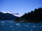 Glacial Ice Floats in the Prince William Sound, Alaska Photographic Print by Stacy Gold