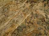 Close View of the Texture of a Stone, Groton, Connecticut Photographic Print by Todd Gipstein