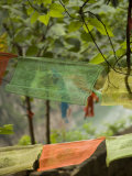 Colorful Buddhist Prayer Flags, Wushan, China Fotografisk tryk af David Evans