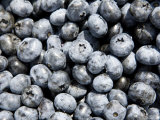 Detail of Picked Blueberries Photographic Print by Tim Laman