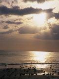 Evening Beach Scene in Florida Lámina fotográfica por Gold, Stacy