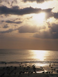 Evening Beach Scene in Florida Photographic Print by Stacy Gold