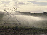 Irrigation Sprinkler Waters an Agricultural Crop, Australia Photographic Print by Jason Edwards