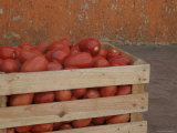 Crate of Red Tomatoes, San Cristobal de Las Casas, Mexico Photographic Print by Gina Martin