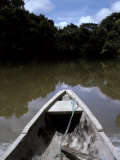 Dugout Canoe on the Amazon River Surrounded by Tropical Rainforest, Peru Photographic Print by Jason Edwards