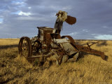 Discarded Antique Farm Harvester Machinery Rusting in a Field at Dawn, Australia Photographic Print by Jason Edwards