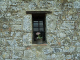 Flower Pot in the Window of a Tuscan Villa, Tuscany, Italy Photographic Print by Todd Gipstein