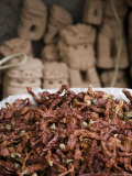 Dried Red Peppers in Front of Traditional Chinese Dog Carvings, Qilian Mountains, China Photographic Print by David Evans