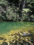 Green Pools of the Torrent River Photographic Print by Rich Reid