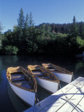Handmade Row Boats at the Quiet Place Lodge, Alaska Photographic Print by Rich Reid